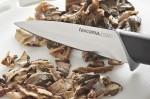 cucina, ricette,ricetta, primi piatti, pasta, funghi, porcini, sughi,primi,