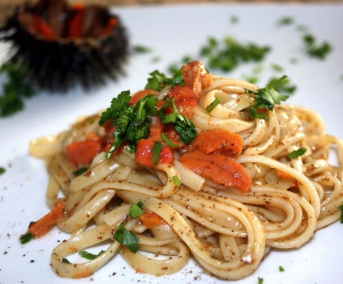 cucina, ricette, ricetta, pappardelle, primi piatti, ricci, ricci di mare, ricette primi piatti,