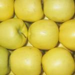 Le-mele-Golden